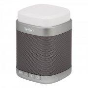 Колонка Bluetooth WK SP390 Gray УЦЕНЕН