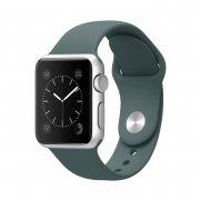 Ремешок для Apple Watch 42mm M/L силиконовый зеленая сосна